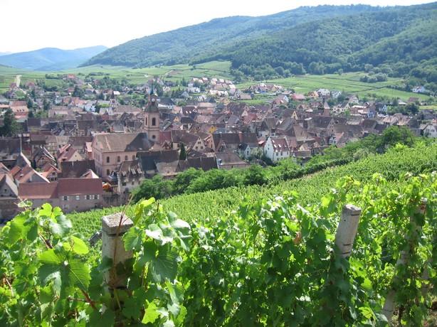Alsace2