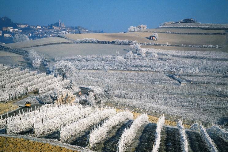 Piemonte1